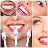 γυναίκα δοντιών στοκ εικόνα