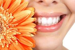 γυναίκα δοντιών Στοκ φωτογραφίες με δικαίωμα ελεύθερης χρήσης