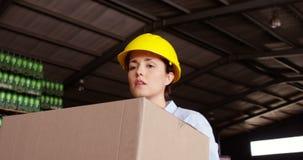 Γυναίκα εργαζόμενος που τακτοποιεί το κιβώτιο στην αποθήκη εμπορευμάτων φιλμ μικρού μήκους