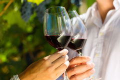 Γυναίκα και άνδρας στο κρασί κατανάλωσης αμπελώνων στοκ φωτογραφίες