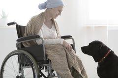 Γυναίκα και ένα σκυλί στοκ φωτογραφία με δικαίωμα ελεύθερης χρήσης