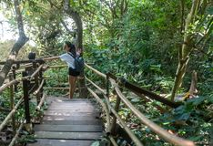 Γυναίκα και έφηβος που περπατούν στην ξύλινη διάβαση στοκ εικόνες