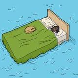 Γυναίκα και γάτα κοιμισμένες σε Waterbed Στοκ Φωτογραφίες