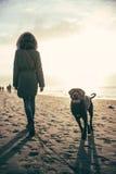 Γυναίκα και γκρίζο σκυλί corso καλάμων στην παραλία κατά τη διάρκεια του ηλιοβασιλέματος - καλοκαίρι Στοκ φωτογραφία με δικαίωμα ελεύθερης χρήσης