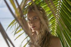 Γυναίκα κοντά στο φοίνικα Στοκ Φωτογραφίες
