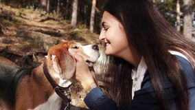 Γυναίκα με ένα γοητευτικό σκυλί που περπατά στο πάρκο φθινοπώρου φιλμ μικρού μήκους