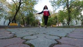 Γυναίκα με ένα γοητευτικό σκυλί που περπατά στο πάρκο φθινοπώρου απόθεμα βίντεο
