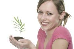 Γυναίκα με να αναπτύξει το φυτό Στοκ Εικόνες