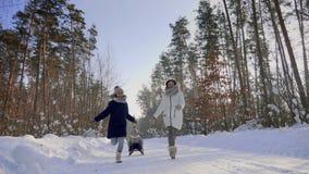 Γυναίκα με τα παιδιά που οργανώνονται σε έναν χιονώδη δρόμο μέσω του δάσους απόθεμα βίντεο