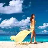 Γυναίκα με τα σαρόγκ στην παραλία Στοκ εικόνα με δικαίωμα ελεύθερης χρήσης