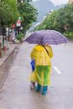Γυναίκα με την ομπρέλα που περπατά στην πέφτοντας βροχή Στοκ Φωτογραφία