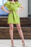 Γυναίκα με τη σγουρή τρίχα σε ένα φόρεμα Στοκ Εικόνα