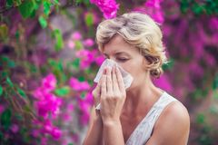 Γυναίκα με με τη φυσώντας μύτη συμπτώματος αλλεργίας Στοκ Εικόνες
