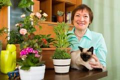 Γυναίκα με τις εγκαταστάσεις γατών και λουλουδιών Στοκ εικόνα με δικαίωμα ελεύθερης χρήσης