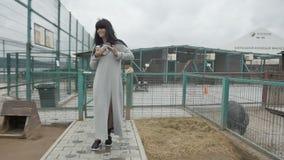 Γυναίκα με το λαγουδάκι στο ζωολογικό κήπο απόθεμα βίντεο
