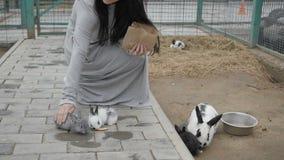Γυναίκα με το λαγουδάκι στο ζωολογικό κήπο φιλμ μικρού μήκους