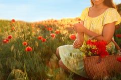 Γυναίκα με το καλάθι των wildflowers στον ηλιοφώτιστο τομέα παπαρουνών, κινηματογράφηση σε πρώτο πλάνο στοκ φωτογραφίες