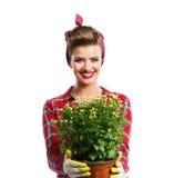 Γυναίκα με το καρφίτσα-επάνω hairstyle δοχείο λουλουδιών εκμετάλλευσης με το κίτρινο daisi Στοκ φωτογραφίες με δικαίωμα ελεύθερης χρήσης