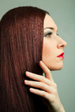 Γυναίκα με το μακρύ καφετί τρίχωμα και τα κόκκινα χείλια. Στοκ φωτογραφίες με δικαίωμα ελεύθερης χρήσης