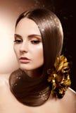 Γυναίκα με το μακρύ καφετί τρίχωμα ομορφιάς - χροιά και χρωματισμός στοκ φωτογραφία με δικαίωμα ελεύθερης χρήσης