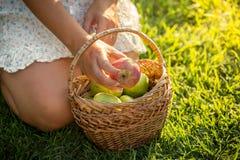 Γυναίκα με το σύνολο καλαθιών των μήλων που κάθεται στη χλόη Στοκ Φωτογραφίες