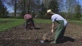 Γυναίκα με το φτυάρι κηπουρική έννοιας φιλμ μικρού μήκους