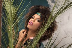 Γυναίκα με το afro hairstyle και τη γοητεία makeup στοκ εικόνες με δικαίωμα ελεύθερης χρήσης