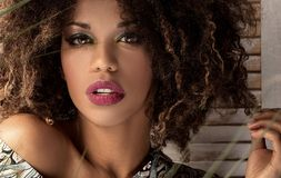 Γυναίκα με το afro hairstyle και τη γοητεία makeup στοκ φωτογραφία με δικαίωμα ελεύθερης χρήσης