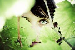 γυναίκα μυστηρίου Στοκ Φωτογραφίες