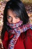 γυναίκα μόδας πτώσης προκ&la Στοκ Εικόνες