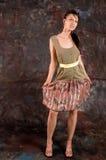 γυναίκα μόδας στοκ εικόνα