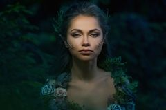 Γυναίκα νεραιδών σε ένα δάσος Στοκ εικόνες με δικαίωμα ελεύθερης χρήσης
