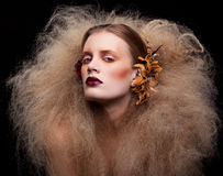 Γυναίκα ομορφιάς αποκριών makeup Στοκ εικόνα με δικαίωμα ελεύθερης χρήσης