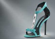 γυναίκα παπουτσιών έννοι&alpha Στοκ Εικόνα
