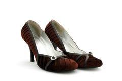 γυναίκα παπουτσιών του s Στοκ εικόνες με δικαίωμα ελεύθερης χρήσης