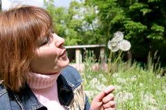 γυναίκα πικραλίδων Στοκ εικόνες με δικαίωμα ελεύθερης χρήσης