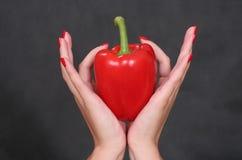 γυναίκα πιπεριών s χεριών Στοκ Εικόνες