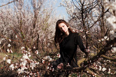 γυναίκα πορτρέτου ομορφ&i Στοκ εικόνα με δικαίωμα ελεύθερης χρήσης