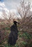 γυναίκα πορτρέτου ομορφ&i Στοκ Εικόνα