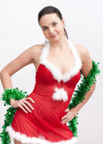 γυναίκα πουλιών santa φορεμάτ& στοκ εικόνες με δικαίωμα ελεύθερης χρήσης