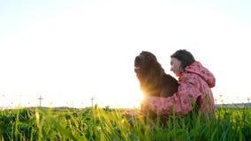 Γυναίκα που αγκαλιάζει το σκυλί στο ηλιοβασίλεμα καθμένος στη χλόη στοκ εικόνα με δικαίωμα ελεύθερης χρήσης