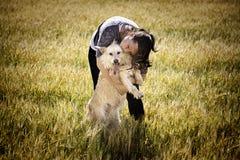 Γυναίκα που αγκαλιάζει το κυνηγόσκυλο στοκ εικόνες
