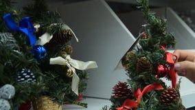 Γυναίκα που αγοράζει το μικρό χριστουγεννιάτικο δέντρο απόθεμα βίντεο