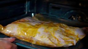 Γυναίκα που βάζει το κοτόπουλο στο φούρνο για το ψήσιμο απόθεμα βίντεο