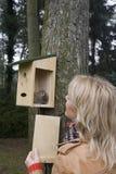 Γυναίκα που εξετάζει nestbox, Vrouw στο nestkast kijkend στοκ εικόνα