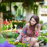 Γυναίκα που επιλέγει τα λουλούδια στην παρισινή αγορά λουλουδιών στοκ φωτογραφία με δικαίωμα ελεύθερης χρήσης