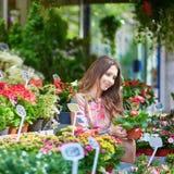 Γυναίκα που επιλέγει τα λουλούδια στην παρισινή αγορά λουλουδιών στοκ φωτογραφία