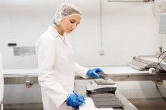 Γυναίκα που εργάζεται στο εργοστάσιο παγωτού Στοκ φωτογραφία με δικαίωμα ελεύθερης χρήσης