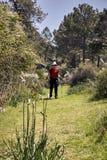 Γυναίκα που κάνει την οδοιπορία στη φύση στοκ εικόνα