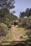 Γυναίκα που κάνει την οδοιπορία στη φύση στοκ εικόνες